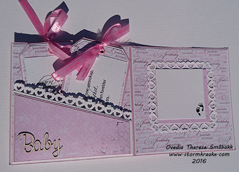 baby-jente-papirdesign-woc-wild-orchid-crafts-bazzill-papirdesign-wycinanka-joy-crafts-staz-ovedia-therese-smabakk-003