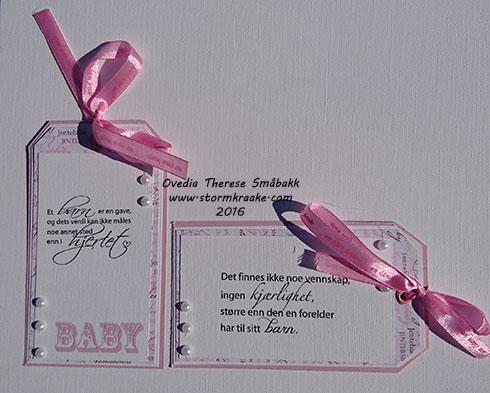 baby-jente-papirdesign-woc-wild-orchid-crafts-bazzill-papirdesign-wycinanka-joy-crafts-staz-ovedia-therese-smabakk-008